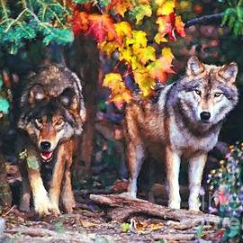 Les Palenik - Two wolves in the fall