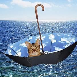 Bruce Iorio - Umbrella Boat