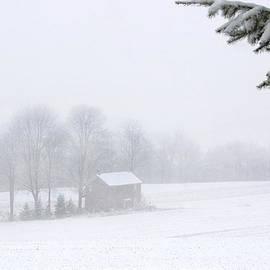 Gene Walls - Unadorned Farmhouse At Christmas