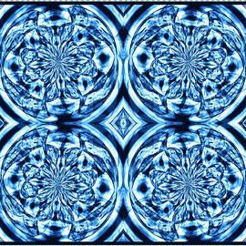 Shawna Rowe - Under The Microscope - Mitosis