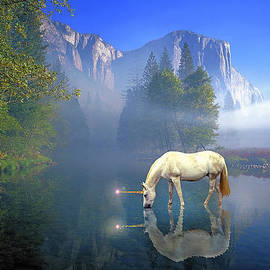 Unicorn I by Buddy Mays
