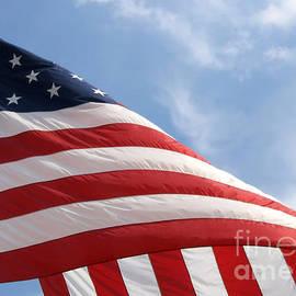 Ann Horn - United States Flag