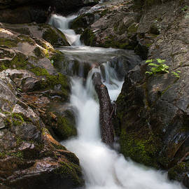 Upper Pup Creek Falls by Paul Rebmann