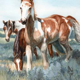 Linda L Martin - Van Gogh of Sand Wash Basin Colorado