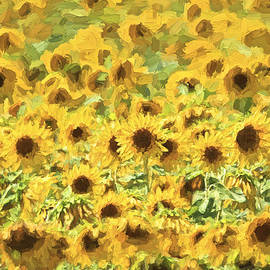 Van Gogh Sunflowers by David Letts