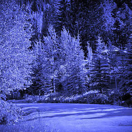 Madeline Ellis - Velvet Winter - Vail - Colorado