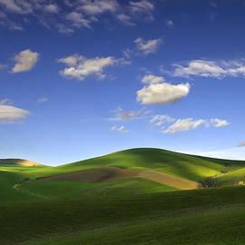 Verde Primavera 2 by Pino Perrotta