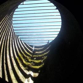 James Potts - View From below