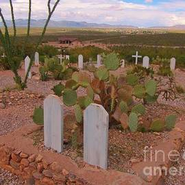 John Malone - View of Arizona From Boothill Cemetery