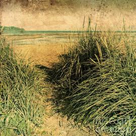 Vintage Beach  by Roxy Hurtubise