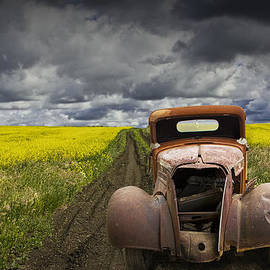 Randall Nyhof - Vintage Chevy Pickup on a dirt path through a canola field
