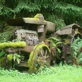 Vintage Overgrown Rusted Tractor by Ian Mcadie