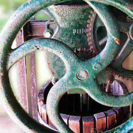 Dawn Gari - Vintage Wine Press