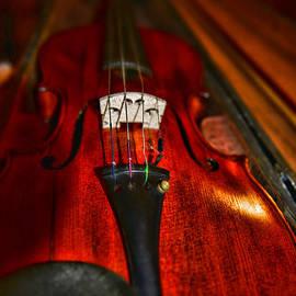 Paul Ward - Violin Study