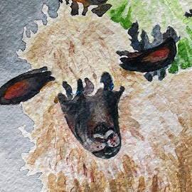 Mary Ellen Mueller Legault - Virgin Wool