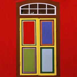 Vivid Color by Shaun Higson