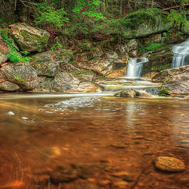 Wading Pool by Bill Wakeley
