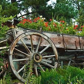 Kae Cheatham - Wagon Garden