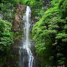 Waikani Falls at Wailua Maui Hawaii by Connie Fox