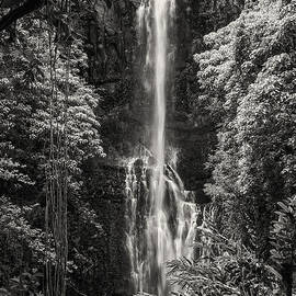 Wailua Falls 3 by Bob Phillips