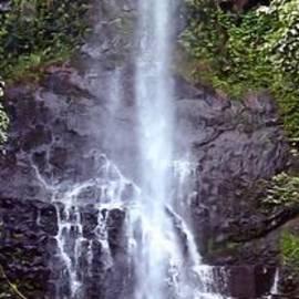Wailua Falls Maui Hawaii by DJ Florek