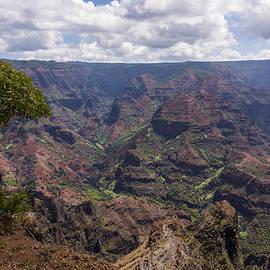 Brian Harig - Waimea Canyon 5 - Kauai Hawaii