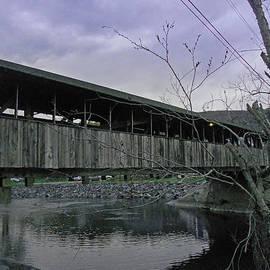 Ildiko Mester - Waitsfield Covered Bridge