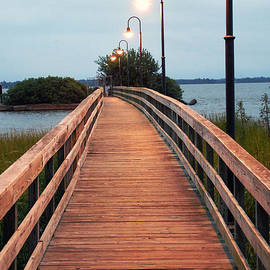 Scott D Welch - Walking Bridge