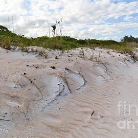 Michelle Wiarda - Walking in the Sand