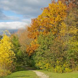 Walking Through Autumn by Ann Horn