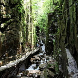 Christiane Schulze Art And Photography - Walkway Franconia Notch State Park