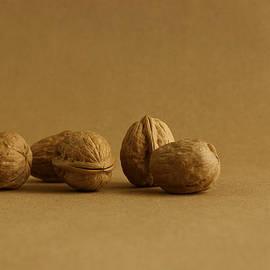 Walnuts Alone by Mark McKinney
