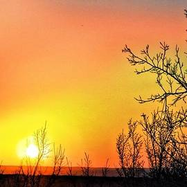 Warm Sky by Trisha Buchanan