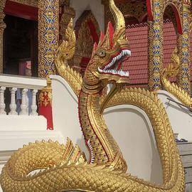 Wat Dok Eung Phra Wihan Naga DTHCM0349 by Gerry Gantt