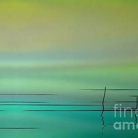 Andrea Kollo - Water Abstract Aurora