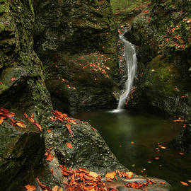 Water Falls as Autumn Starts by Karol Livote