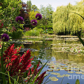 Alex Cassels - Water Garden 2 at Giverny