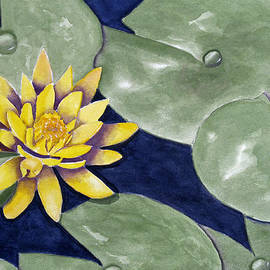 Water Lily by Rich Stedman
