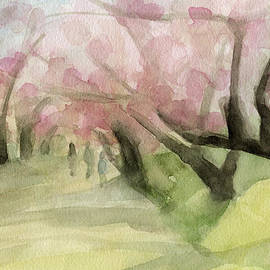 Watercolor Painting Of Cherry Blossom Trees In Central Park Nyc by Beverly Brown