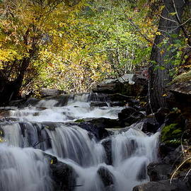 Waterfall At Indian Rock Bc by Guy Hoffman