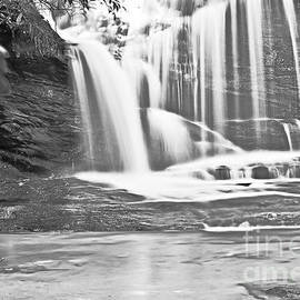 Waterfall Black and White by Elvis Vaughn