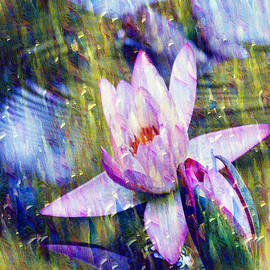 Purple Waterlily Paradise by Carol F Austin