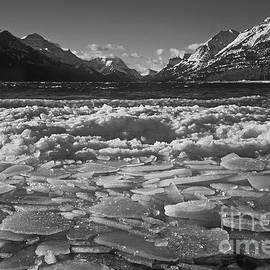 Waterton Winter by Inge Riis McDonald