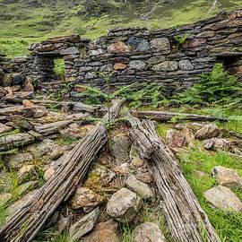 Adrian Evans - Watkin Path Ruin