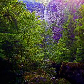 Watson Falls by Michele Avanti