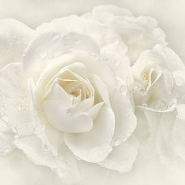 Jennie Marie Schell - Wedding Day White Roses