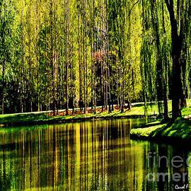 Carol F Austin - Weeping Willow Tree on Lakeside