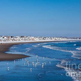 Wells Beach In Winter by Susan Cole Kelly