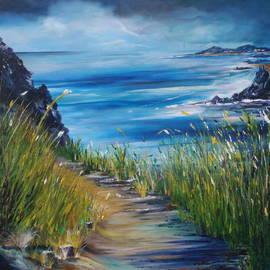 West coast of Ireland by Conor Murphy