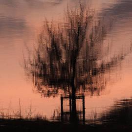 Clive Beake - Wet Tree2